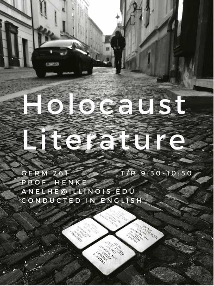 Image for Holocaust Literature